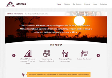 Web Design for afrimoz.com